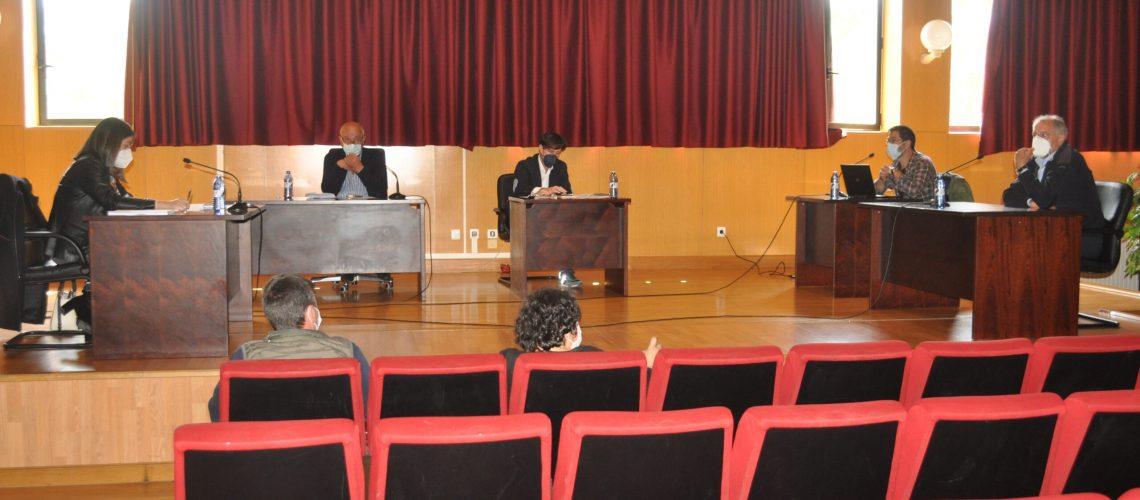 Pleno ordenanza emergencia social (2)